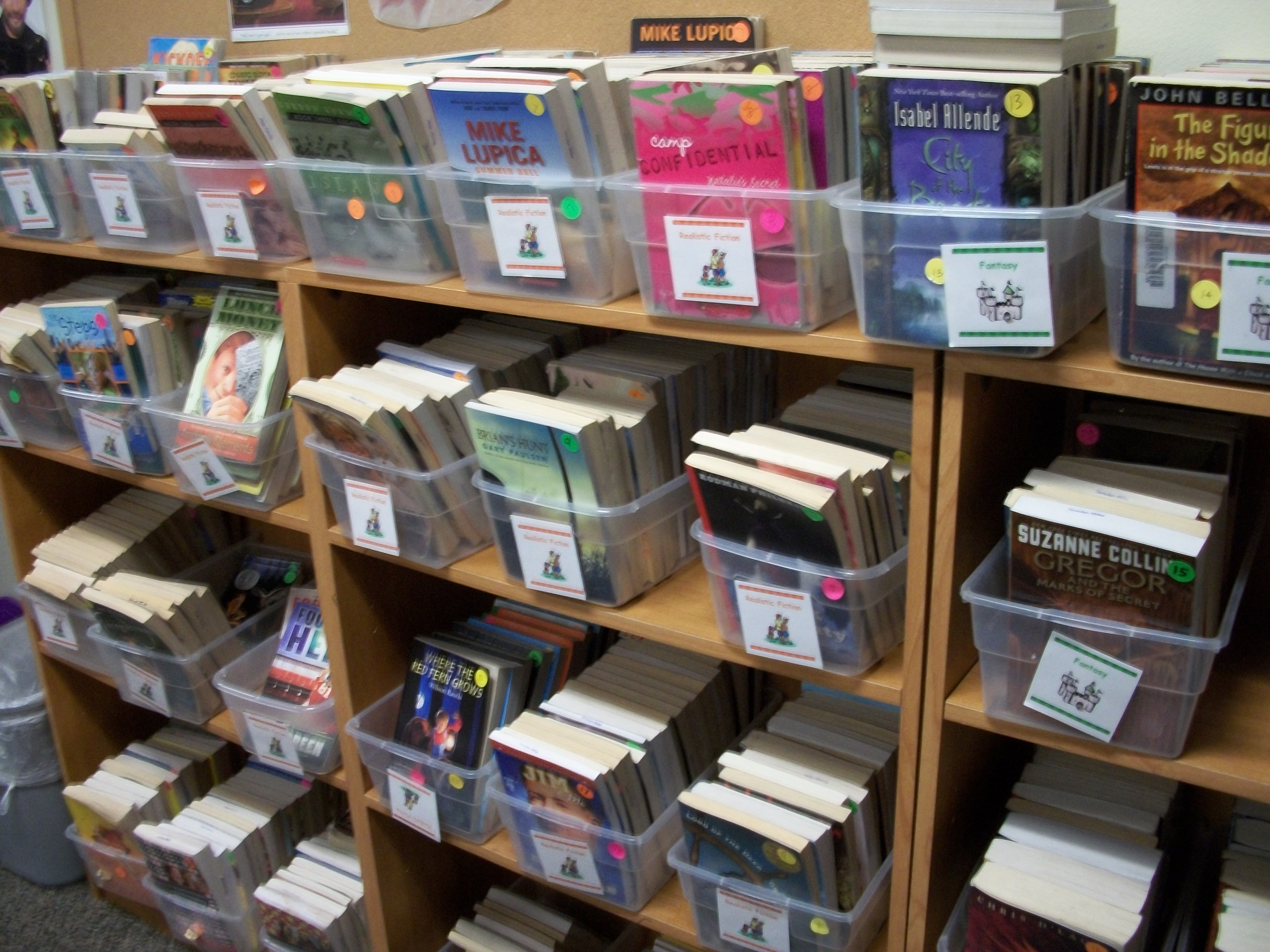 Excellent Introducing Students To The Classroom Library By Donalyn Home Interior And Landscaping Spoatsignezvosmurscom