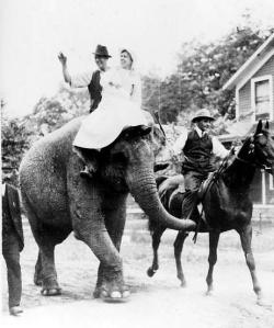 Joe and Myra Keaton parade down the streets of Bluffton.