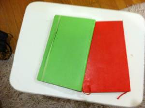 Liesl's notebooks for Jack and Red. Prize to the one who guesses which is which. Could be tricky!