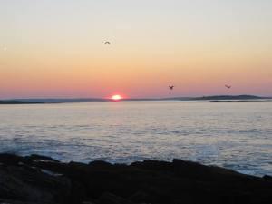 Cynthia Lord sunset
