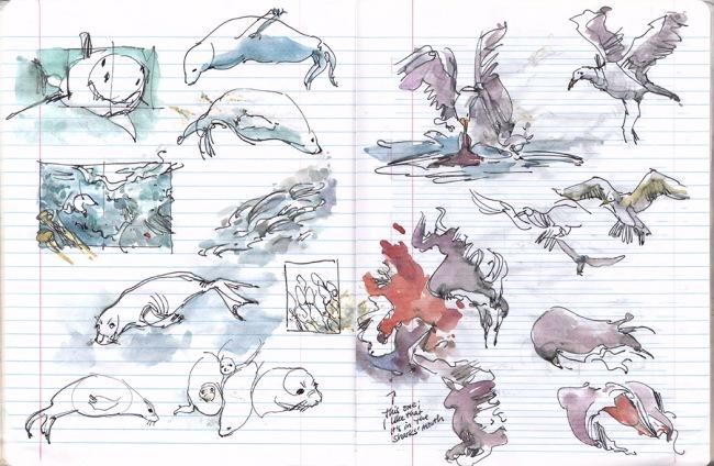 ROY_SHARKSSketchbook4