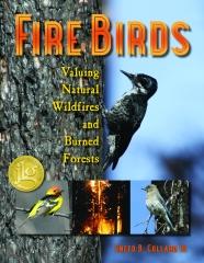 FireBird.finalCovOnly