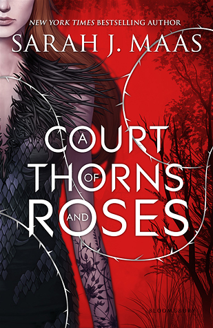 A Crown of Thorns and Roses by Sarah J  Maas – Review by