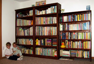 http://3.bp.blogspot.com/_YSy_RzgZt5g/TM4HTwV3MXI/AAAAAAAAEJ0/5U1E-dp-Isc/s1600/bookcases