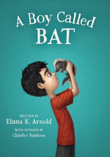 Image result for a boy called bat