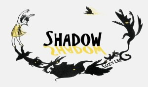 shadow-cover