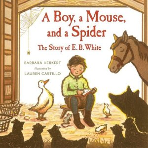 a boy a mouse and a spider