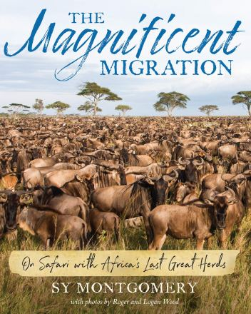 the magnificient migration